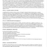 statuts-fgeek_Page_4